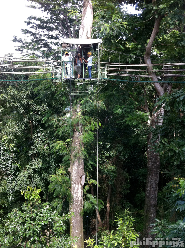 Subic Tree Top Adventure Drop