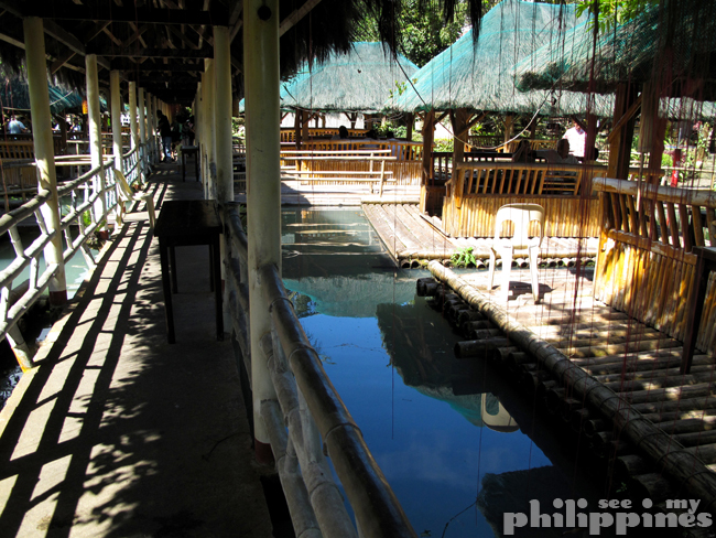 Palaisdaan restaurant tayabas city see my philippines for Koi pond quezon city