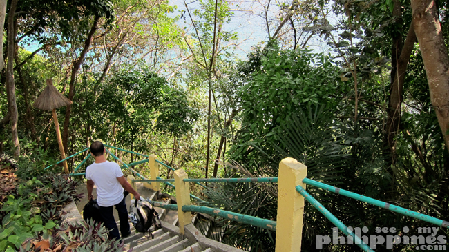Dive Solana Resort Anilao Batangas Stairs