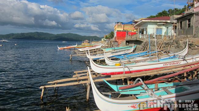 King Solomon Dive Resort Mabini Batangas Neighbours
